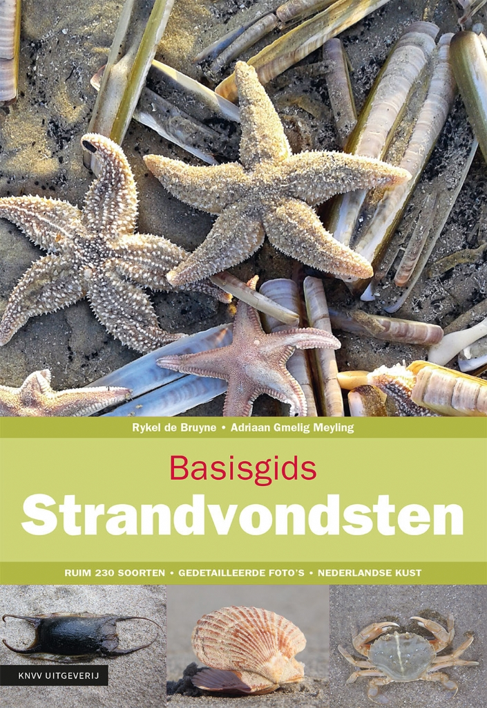 Basisgids Strandvondsten 9789050116855 Rykel de Bruyne KNNV Basisgidsen  Natuurgidsen Nederland
