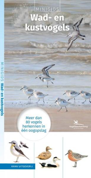 Minigids Wad- en Kustvogels 9789050116916 illustraties van Elwin van der Kolk KNNV   Natuurgidsen, Vogelboeken Nederland
