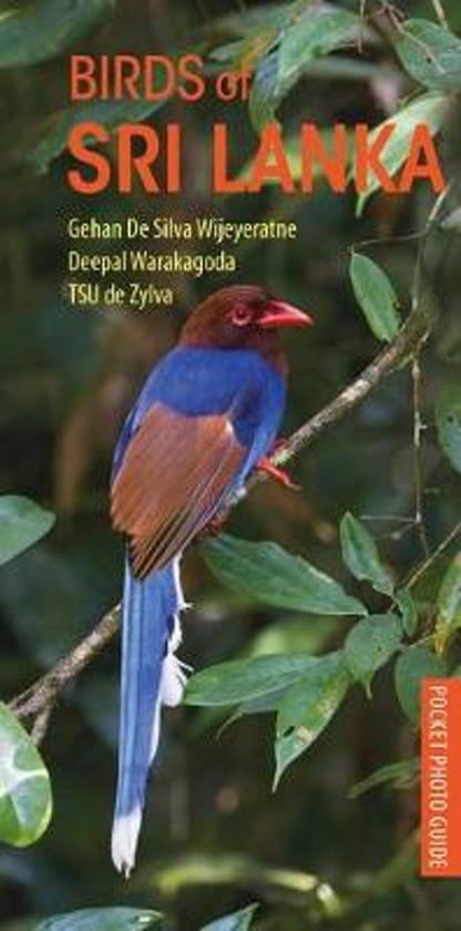 Birds of Sri Lanka 9781472969941 Gehan De Silva Wijeyeratne Deepal Warakagoda Bloomsbury Photographic Guides  Natuurgidsen, Vogelboeken Sri Lanka