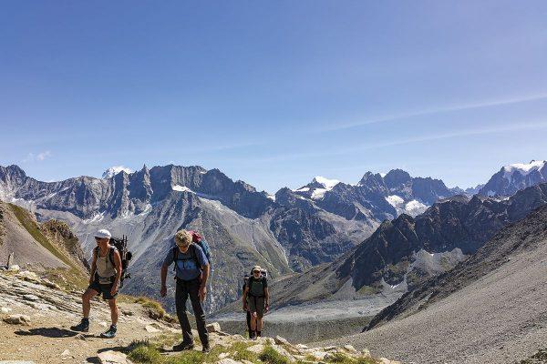 Chamonix to Zermatt | wandelgids 9781786310484 Kev Reynolds Cicerone Press   Meerdaagse wandelroutes, Wandelgidsen Wallis