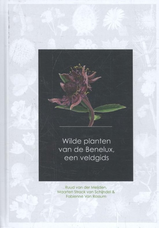 Wilde Planten van de Benelux - een veldgids 9789082451139 Ruud van der Meijden, Strack v Schijndel, et.al Agora / Plantentuin Meise   Natuurgidsen, Plantenboeken Benelux