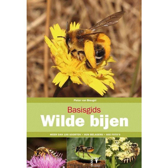 Basisgids Wilde Bijen 9789050116848 Pieter van Breugel KNNV Basisgidsen  Natuurgidsen Europa