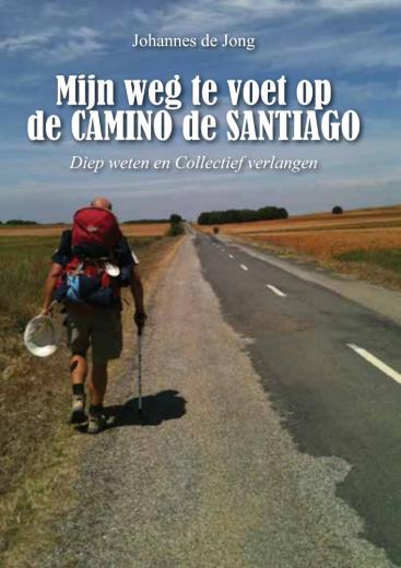 Mijn weg te voet op de Camino de Santiago | Johannes de Jong 9789463893206 Johannes de Jong Boekscout   Santiago de Compostela, Wandelgidsen Europa