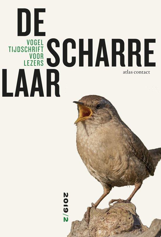 De scharrelaar - 2019/2 9789045040387 red.: Jean-Pierre Geelen, Emile Brugman et.al. Atlas-Contact   Natuurgidsen, Vogelboeken Reisinformatie algemeen