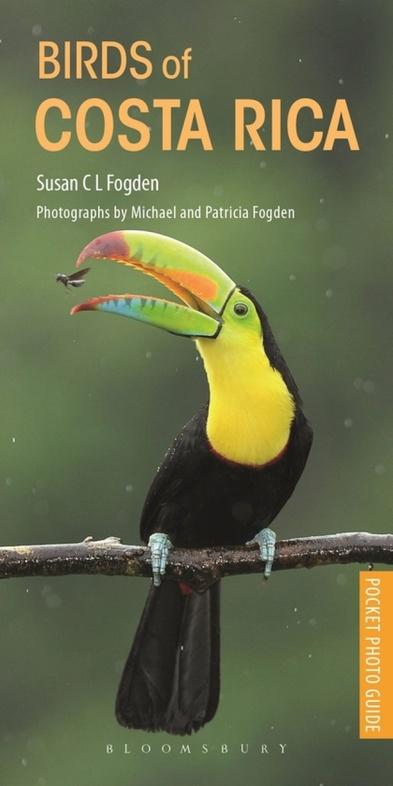 Birds of Costa Rica | vogelgids 9781472971838 Susan C L Fogden Helm   Natuurgidsen, Vogelboeken Costa Rica