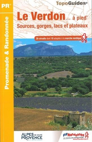 P042  Les Gorges du Verdon... à pied | wandelgids 9782751410314  FFRP Topoguides  Wandelgidsen Franse Alpen: zuid