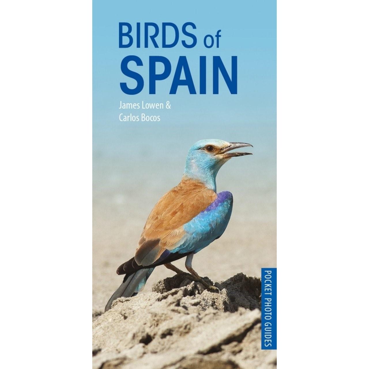 Birds of Spain | vogelgids Spanje 9781472949271  Bloomsbury   Natuurgidsen, Vogelboeken Spanje
