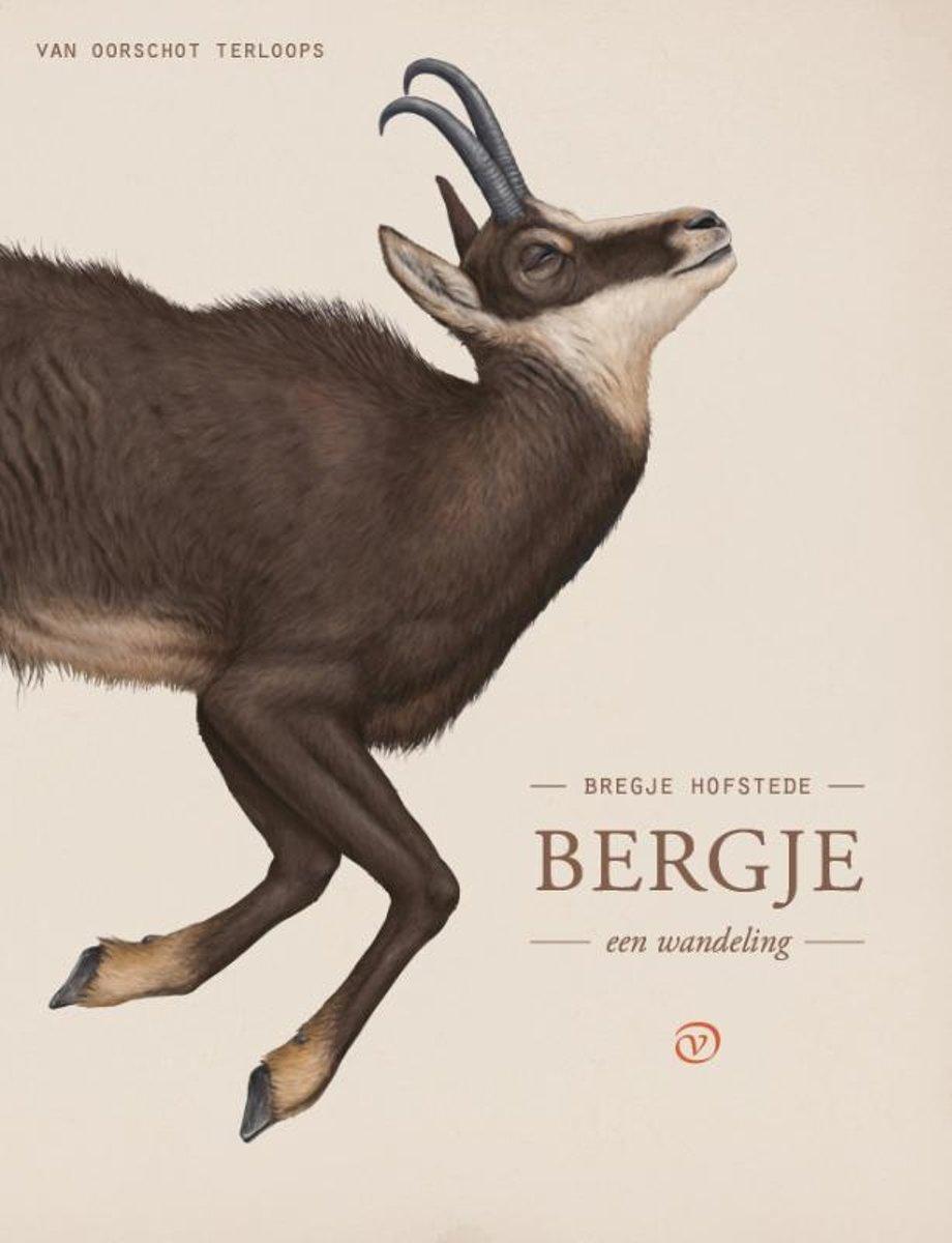 Bergje | Bregje Hofstede 9789028210332 Bregje Hofstede Van Oirschot Terloops  Klimmen-bergsport, Reisverhalen Zuid-Tirol, Dolomieten