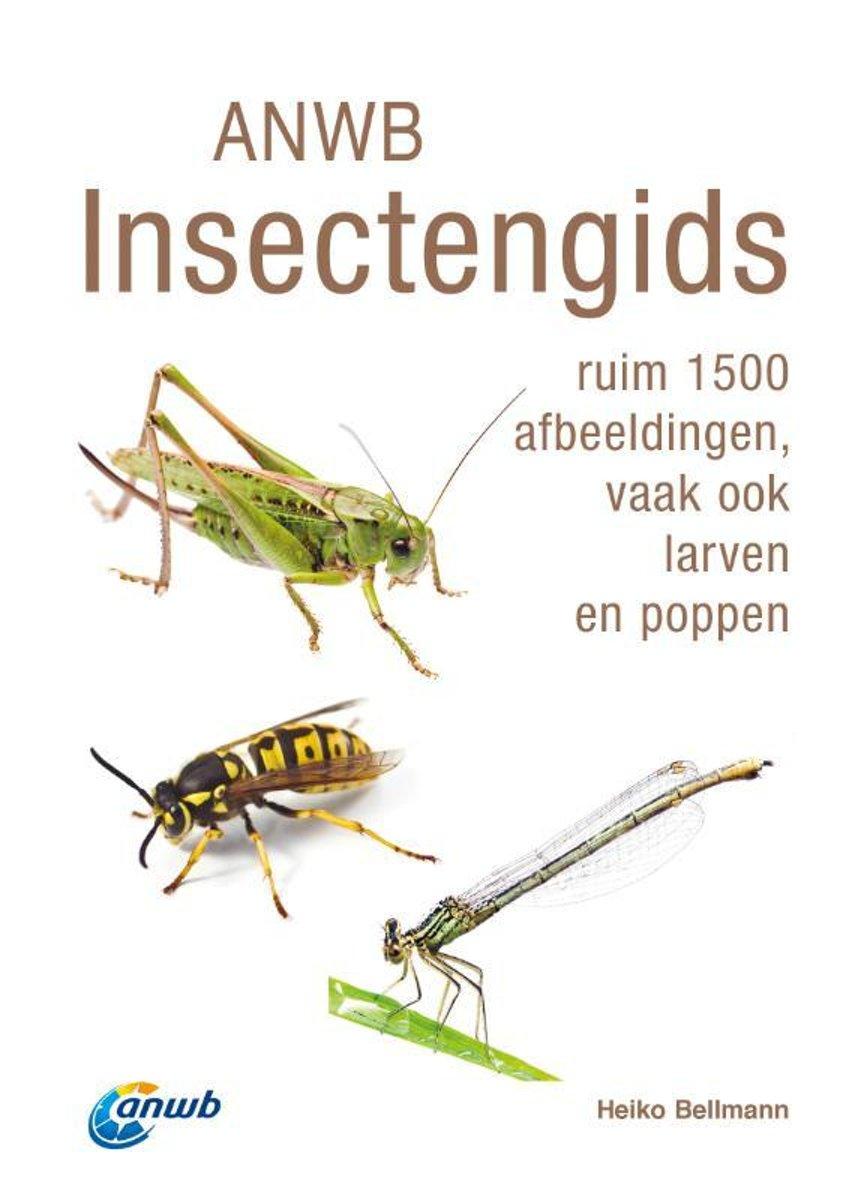 ANWB Insectengids 9789021575360 Heiko Bellmann Kosmos   Natuurgidsen Reisinformatie algemeen