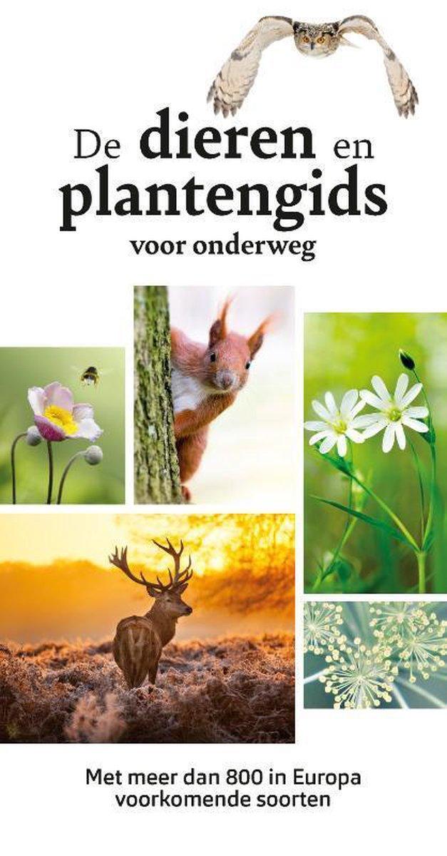 De Dieren- en Planteginds voor onderweg 9789021578453 Wilhelm Eisenreich Kosmos   Natuurgidsen Nederland