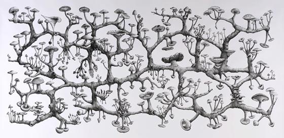 Ecologieën, een album der natuur | Atte Jongstra 9789493183001 Atte Jongstra AFdH   Natuurgidsen Reisinformatie algemeen