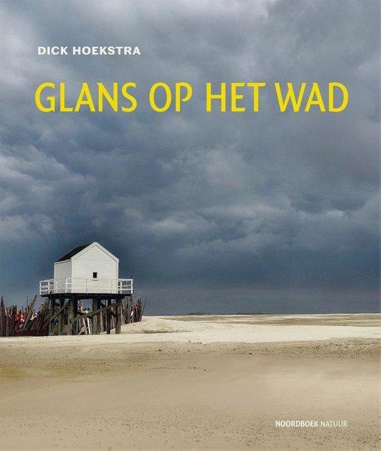 Glans op het wad | Dick Hoekstra 9789056154981 Dick Hoekstra Noordboek   Historische reisgidsen, Landeninformatie Waddeneilanden en Waddenzee