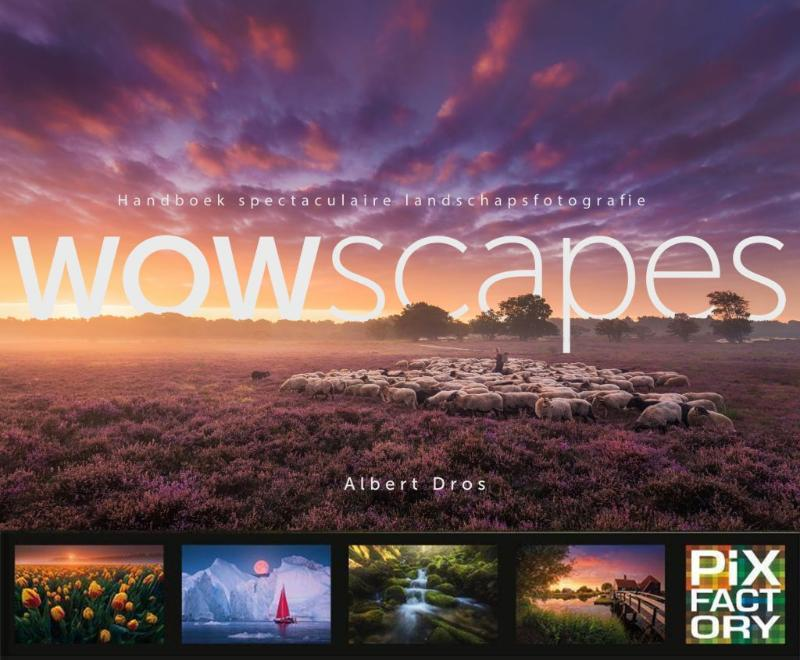 Wowscapes | Albert Dros 9789079588268 Albert Dros Birdpix   Fotoboeken Reisinformatie algemeen