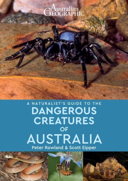 Dangerous Creatures of Australia | natuurgids Australië 9781912081608  John Beaufoy   Natuurgidsen Australië