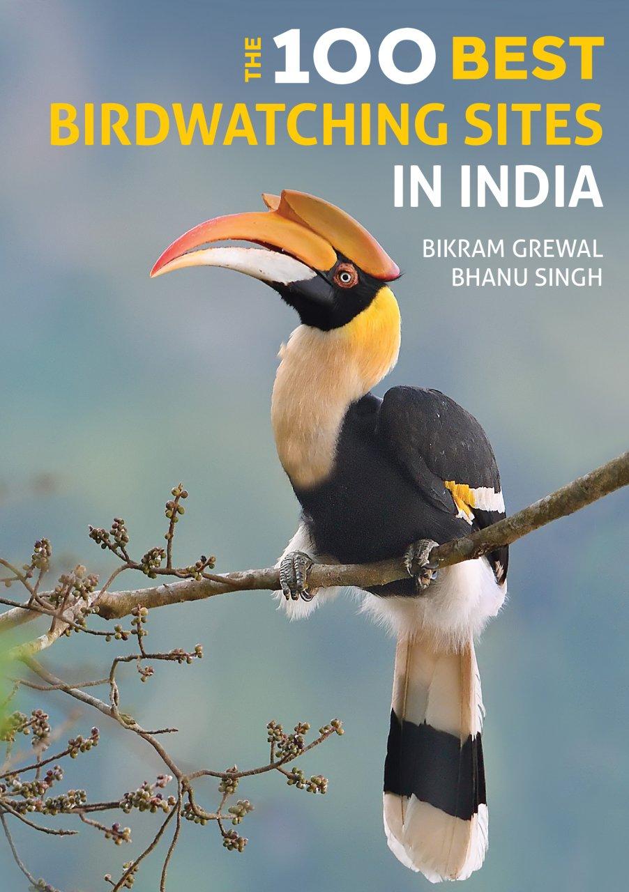 The 100 Best Birdwatching Sites in India 9781912081790 Bikram Grewal en Bhanu Singh Joh Beaufoy Publishing   Natuurgidsen, Vogelboeken India