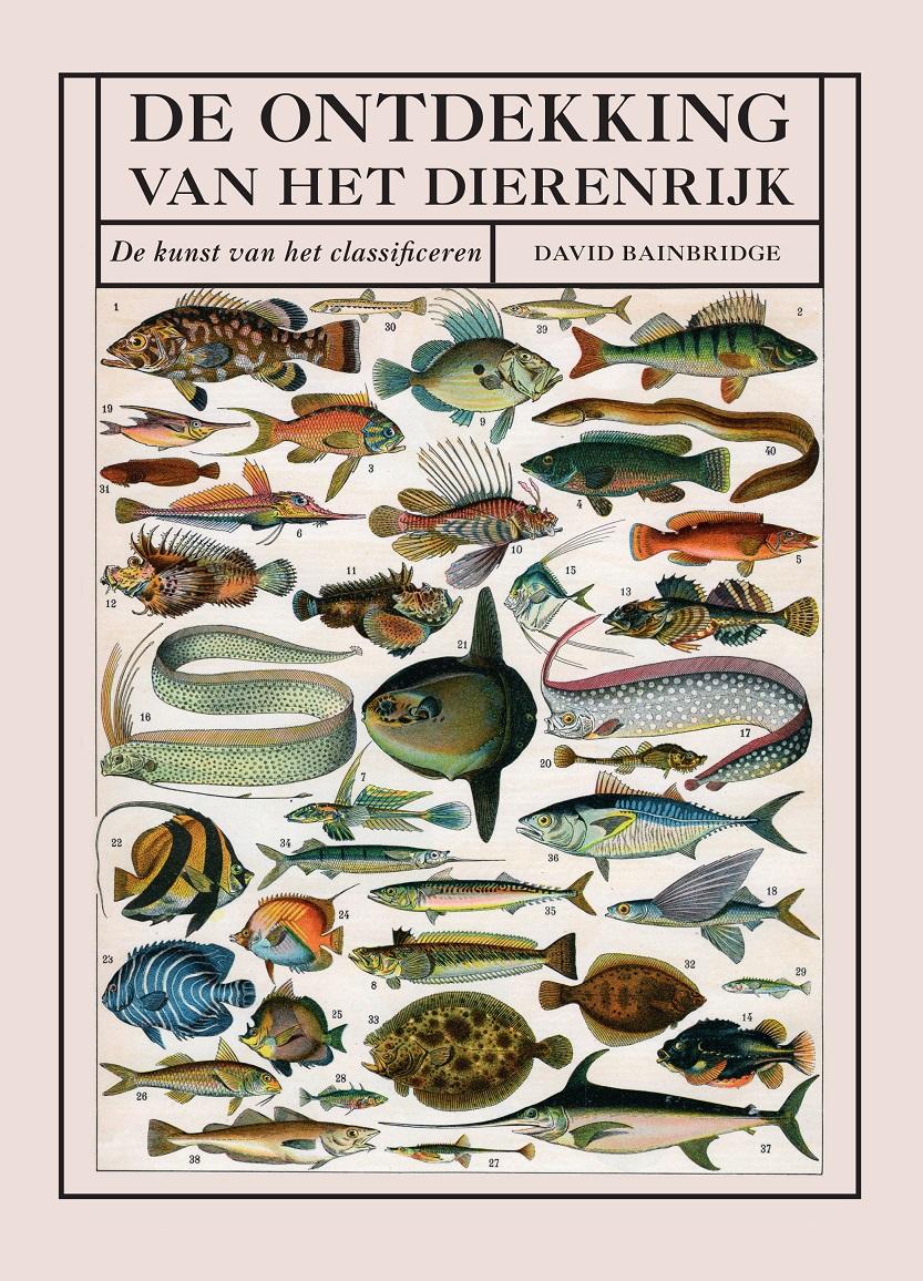 De Ontdekking van het Dierenrijk | David Bainbridge 9789002269257 David Bainbridge Davidsfonds   Historische reisgidsen, Natuurgidsen Reisinformatie algemeen