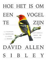 Hoe is het om een vogel te zijn | David Allen Sibley 9789024595143 David Allen Sibley Luitingh - Sijthoff   Natuurgidsen, Vogelboeken Reisinformatie algemeen
