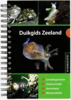 Duikgids Zeeland 9789081875424 Dolphins Dive Centre, Marloes Otten Caribbean Diveguides   Duik sportgidsen Zeeland