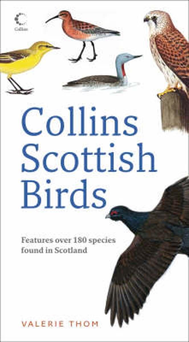 Collins Scottish Birds 9780007270682 Valerie Thom Collins   Natuurgidsen, Vogelboeken Schotland