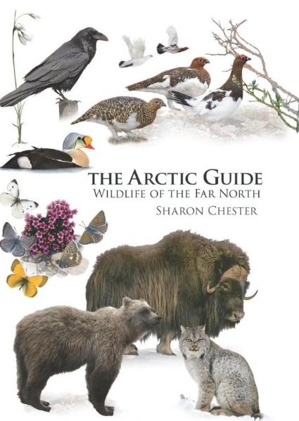 The Arctic Guide: Wildlife of the Far North 9780691139753  Princeton University Press   Natuurgidsen Spitsbergen, Jan Mayen, Noordpool