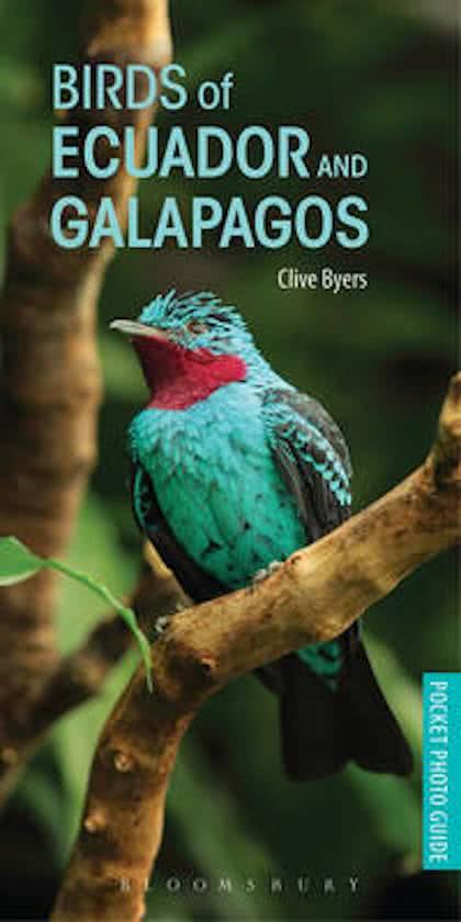 Birds of Ecuador and Galapagos 9781472937902 Clive Byers Bloomsbury Publishing   Natuurgidsen, Vogelboeken Ecuador, Galapagos