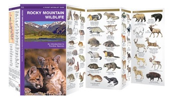 Rocky Mountain Wildlife 9781583550908  Waterford Press   Natuurgidsen VS-West, Rocky Mountains