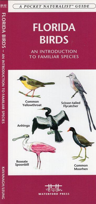 Florida Birds 9781583551059  Waterford Press   Natuurgidsen, Vogelboeken Florida