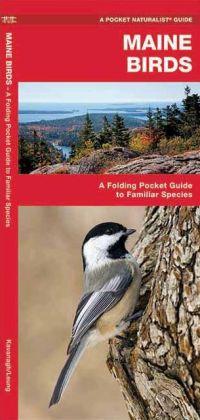 Maine Birds 9781583551509  Waterford Press   Natuurgidsen, Vogelboeken New England