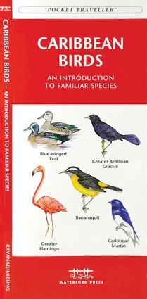 Caribbean Birds 9781583551585  Waterford Press   Natuurgidsen, Vogelboeken Caribisch Gebied