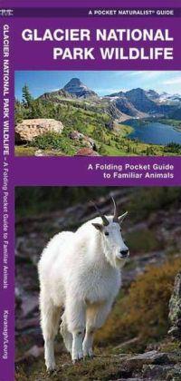 Glacier National Park Wildlife 9781583553596  Waterford Press   Natuurgidsen Washington, Oregon, Idaho, Wyoming, Montana