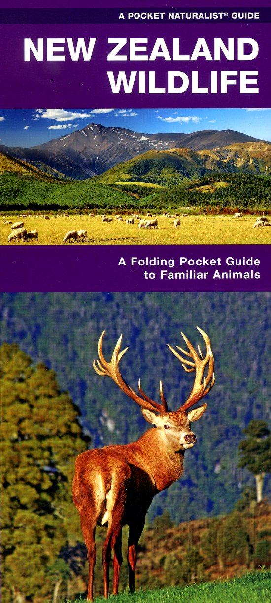 New Zealand Wildlife 9781583558904  Waterford Press   Natuurgidsen Nieuw Zeeland