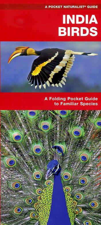 India Birds 9781583559390  Waterford Press   Natuurgidsen, Vogelboeken India