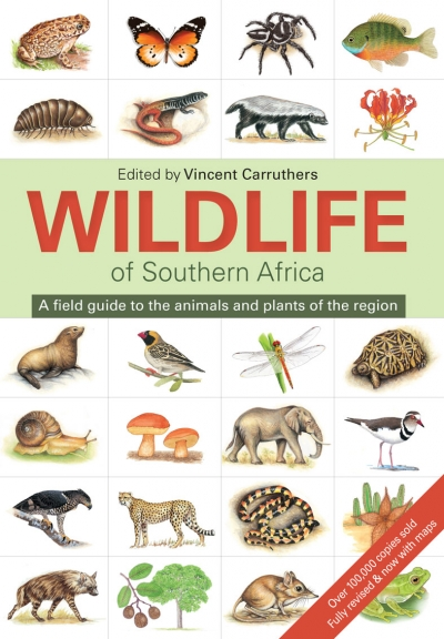 The wildlife of South Africa 9781775843535  Struik   Natuurgidsen Zuidelijk-Afrika