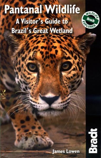 Pantanal Wildlife 9781841623054  Bradt Wildlife Guides  Natuurgidsen Brazilië