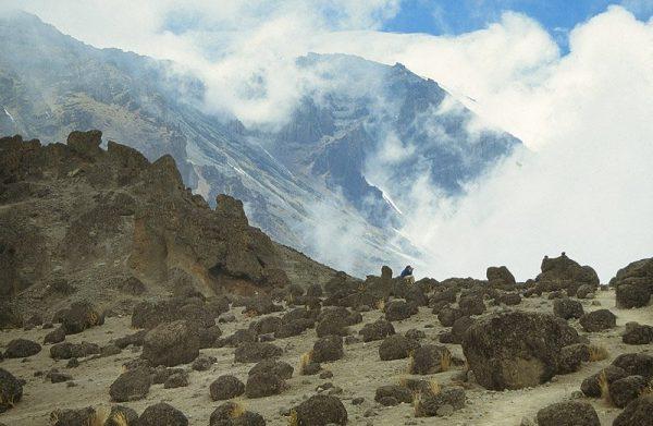 Kilimanjaro | wandelgids 9781852847586  Cicerone Press   Meerdaagse wandelroutes, Wandelgidsen Tanzania, Zanzibar