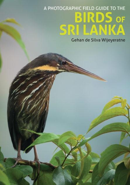 Photographic Field Guide to the Birds of Sri Lanka 9781909612839  John Beaufoy Publishing   Natuurgidsen, Vogelboeken Sri Lanka