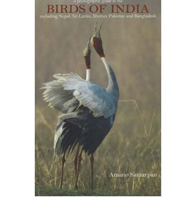 Birds of India 9788183280297  Wisdom Tree Photographic Guides  Natuurgidsen, Vogelboeken Pakistan, India, Bangladesh, Sri Lanka, Malediven