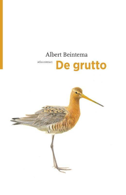 De grutto | Albert Beintema 9789045029443 Albert Beintema Atlas-Contact Vogelmonografieën  Natuurgidsen, Vogelboeken Reisinformatie algemeen
