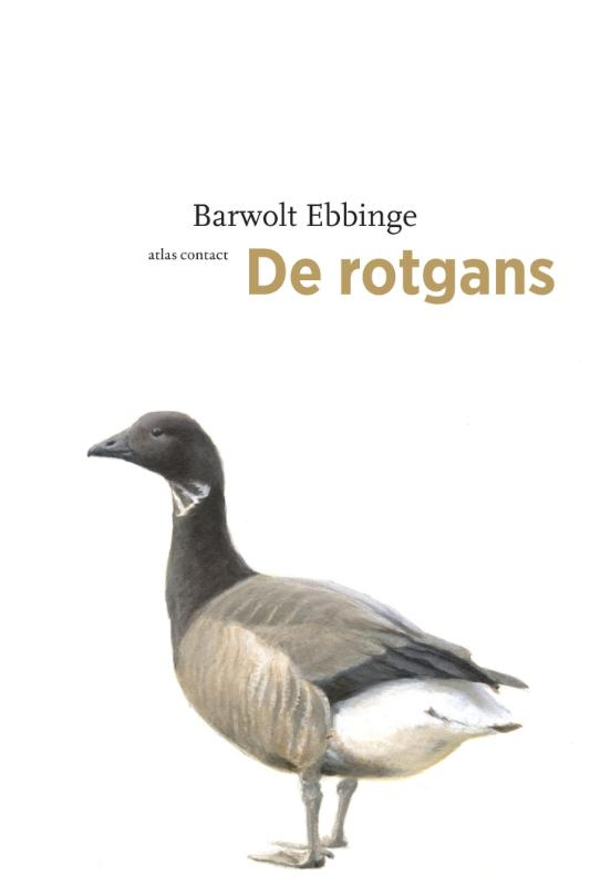 De Rotgans 9789045091600 Bart Ebbinge Atlas-Contact De Vogelserie  Natuurgidsen, Vogelboeken Reisinformatie algemeen