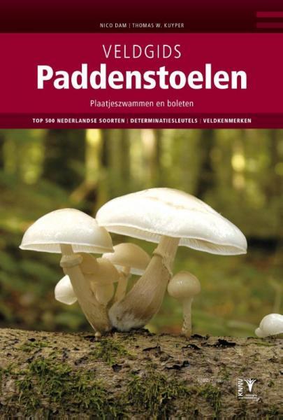 Veldgids Paddenstoelen (paddestoelen) 9789050114639 Nico Dam en Thomas W. Kuyper KNNV Veldgidsen  Natuurgidsen, Plantenboeken Nederland