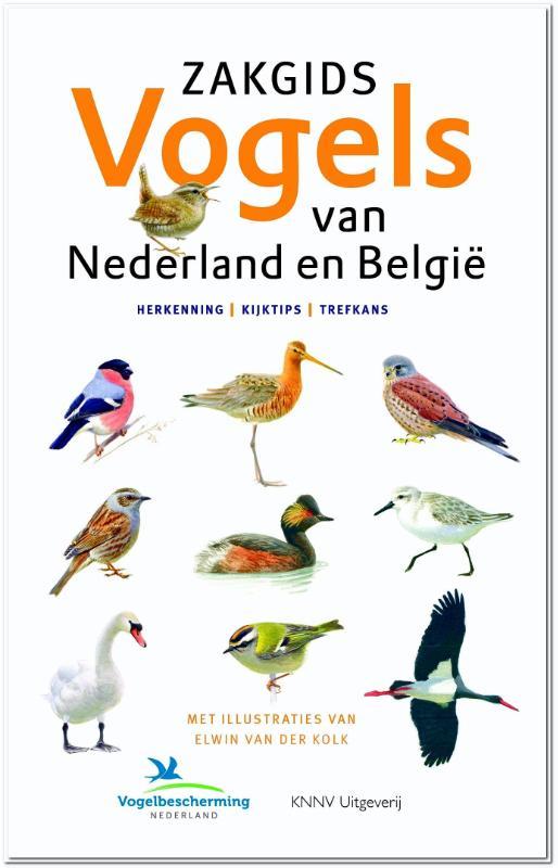 Zakgids vogels van Nederland en België 9789050115810 Ger Meesters, Luc Hoogenstein, Jip Louwe Kooijmans KNNV   Natuurgidsen, Vogelboeken Benelux, Nederland
