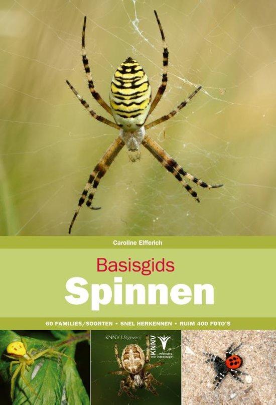Basisgids Spinnen 9789050116671 Caroline Elfferich KNNV Basisgidsen  Natuurgidsen Reisinformatie algemeen