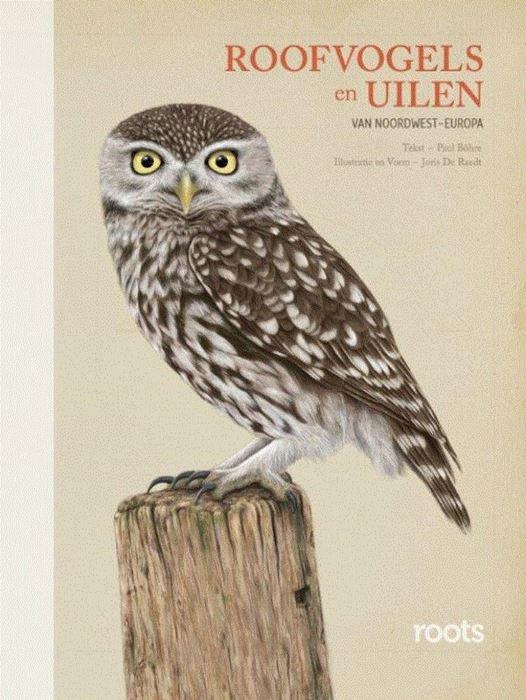 Roofvogels en Uilen 9789059567245  Fontaine   Natuurgidsen, Vogelboeken Reisinformatie algemeen