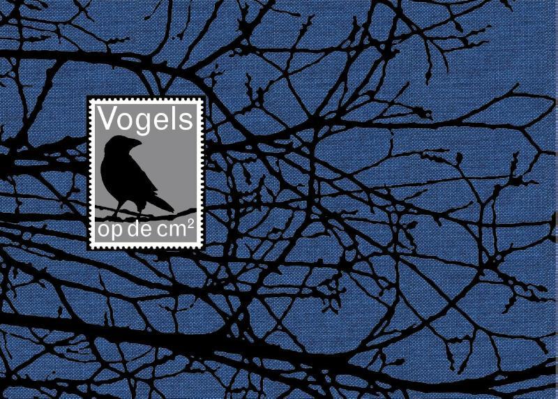 Vogels op de cm2 9789081388702 Peter Müller en Tom Loorij Müller   Natuurgidsen, Vogelboeken Nederland