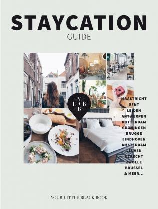 Staycation Guide | Anne de Buck 9789089897695 Anne de Buck Terra   Reisgidsen Benelux
