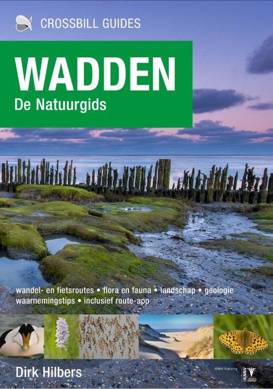 Wadden - de natuurgids | Dirk Hilbers 9789491648151  Crossbill Guides Foundation / KNNV   Natuurgidsen Waddeneilanden en Waddenzee